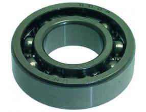 SCREW BEARING 6004 LD1