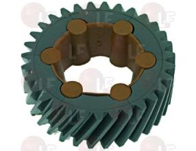 COMPLETE 31-TOOTH GEAR IN NYLON